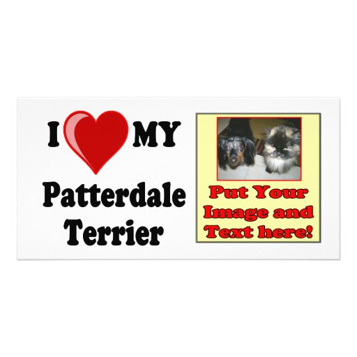 I Love (Heart) My Patterdale Terrier Dog Picture Card