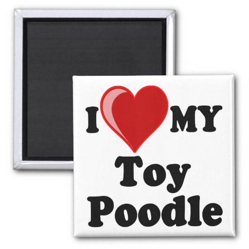 I Love (Heart) My Toy Poodle Dog Magnets