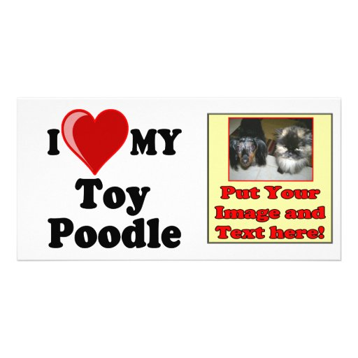 I Love (Heart) My Toy Poodle Dog Customized Photo Card