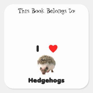 I love hedgehogs square sticker