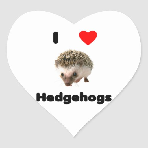 I love hedgehogs heart stickers