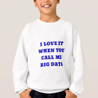 I Love it when you Call Me Big Data Sweatshirt