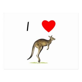 I Love Kangaroos (2) Postcard