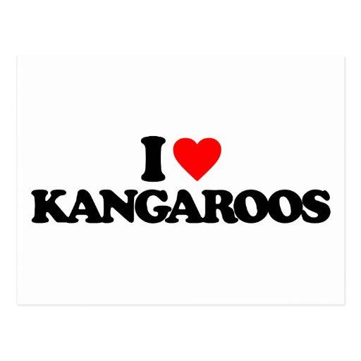 I LOVE KANGAROOS POSTCARDS