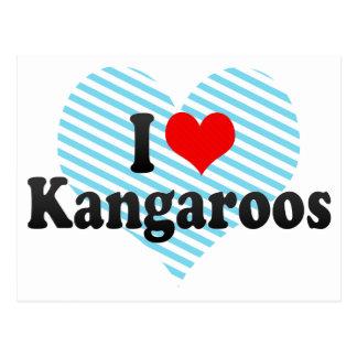 I Love Kangaroos Postcard
