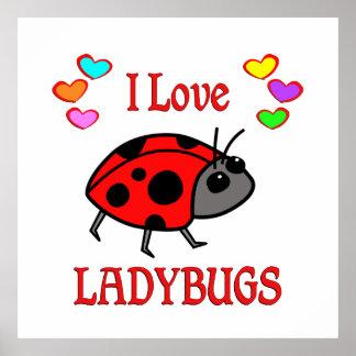 I Love Ladybugs Poster