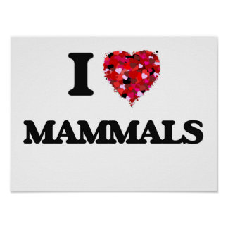 I Love Mammals Poster