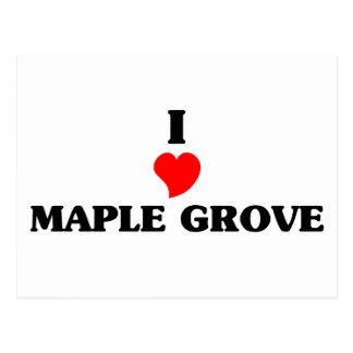 I love Maple Grove Postcard