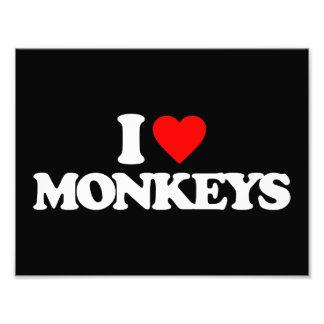 I LOVE MONKEYS PHOTOGRAPHIC PRINT