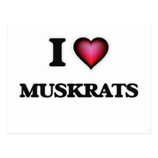 I Love Muskrats Postcard
