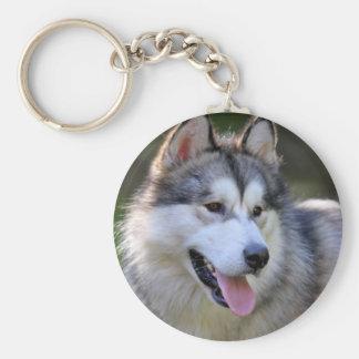 I Love My Alaskan Malamute Gifts & Novelties Basic Round Button Keychain