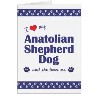 I Love My Anatolian Shepherd Dog (Female Dog) Note Card