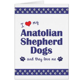 I Love My Anatolian Shepherd Dogs (Multiple Dogs) Note Card