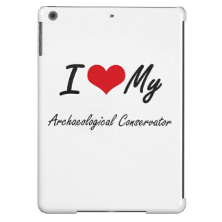 I love my Archaeological Conservator iPad Air Cases