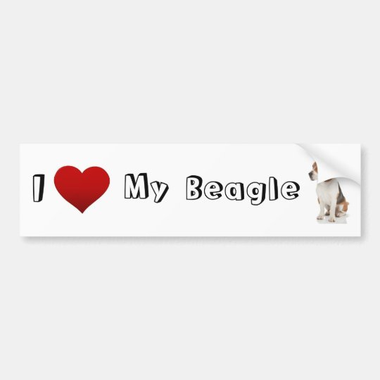I love my Beagle (2) Bumper Sticker