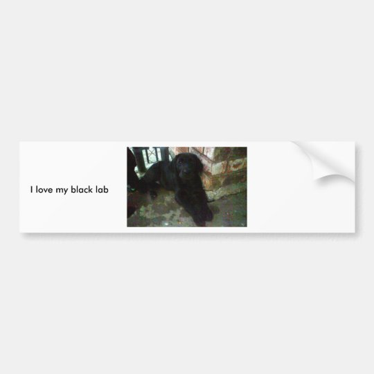 I love my black lab bumper sticker