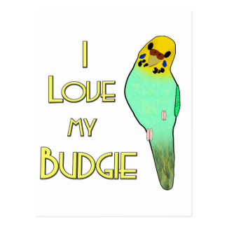 I Love My Budgie Postcard