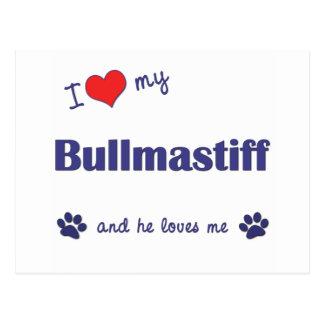 I Love My Bullmastiff (Male Dog) Postcard
