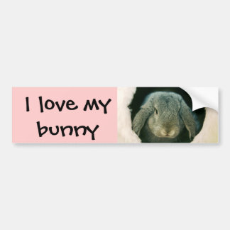 I love my bunny bumper sticker