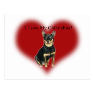"""I Love My Chihuahua"" Dog Art Postcard"