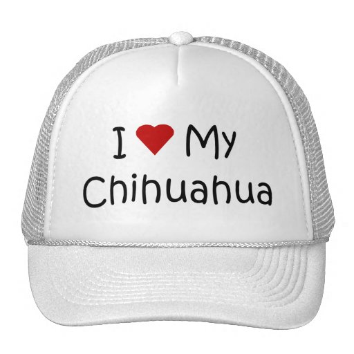 I Love My Chihuahua Dog Breed Lover Gifts Mesh Hat