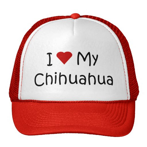 I Love My Chihuahua Dog Breed Lover Gifts Mesh Hats