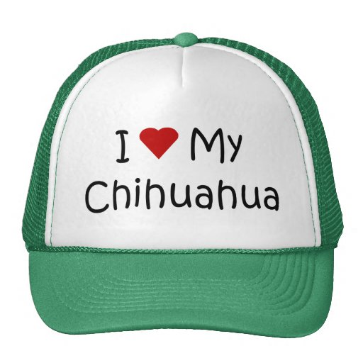 I Love My Chihuahua Dog Breed Lover Gifts Trucker Hats
