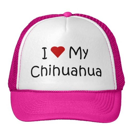 I Love My Chihuahua Dog Breed Lover Gifts Hats