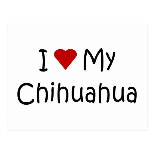 I Love My Chihuahua Dog Breed Lover Gifts Post Card