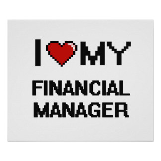 I love my Financial Manager Poster