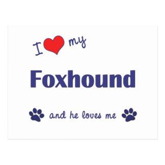 I Love My Foxhound (Male Dog) Postcard