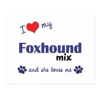 I Love My Foxhound Mix (Female Dog) Postcard