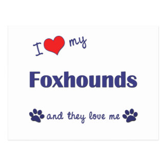 I Love My Foxhounds (Multiple Dogs) Postcard