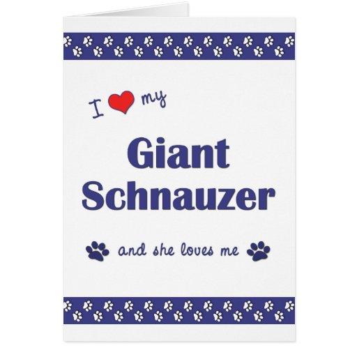 I Love My Giant Schnauzer (Female Dog) Greeting Cards