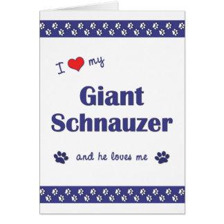 I Love My Giant Schnauzer (Male Dog) Stationery Note Card