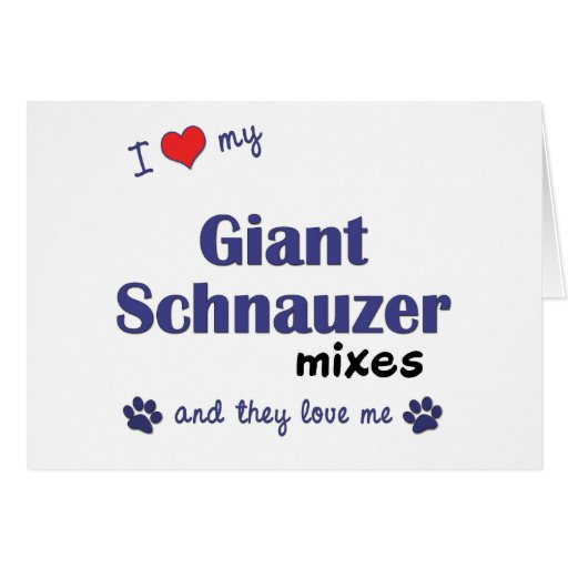 I Love My Giant Schnauzer Mixes (Multiple Dogs) Greeting Cards