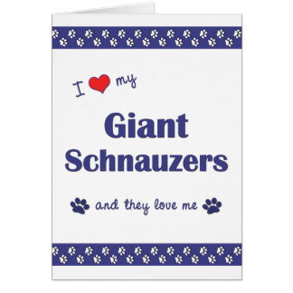 I Love My Giant Schnauzers (Multiple Dogs) Note Card