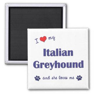 I Love My Italian Greyhound (Female Dog) Magnet