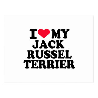 I love my Jack Russel Terrier Postcard