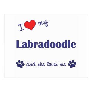 I Love My Labradoodle (Female Dog) Postcard