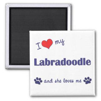 I Love My Labradoodle (Female Dog) Square Magnet