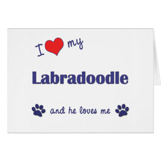 I Love My Labradoodle (Male Dog) Greeting Card