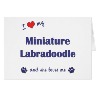 I Love My Miniature Labradoodle (Female Dog) Cards