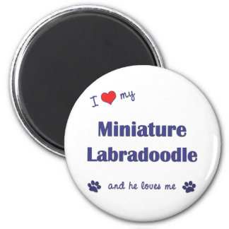 I Love My Miniature Labradoodle (Male Dog) 2 Inch Round Magnet