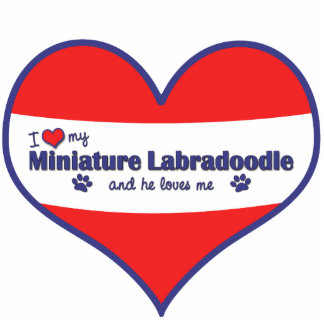 I Love My Miniature Labradoodle (Male Dog) Photo Sculpture Ornament