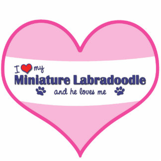 I Love My Miniature Labradoodle (Male Dog) Photo Cut Out
