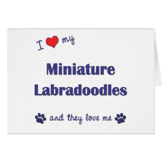 I Love My Miniature Labradoodles (Multiple Dogs) Greeting Card
