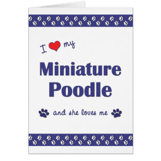 I Love My Miniature Poodle (Female Dog) Note Card