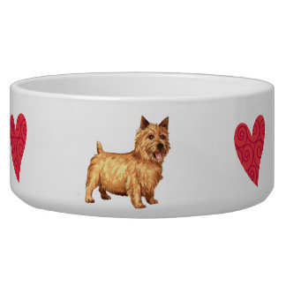I Love my Norwich Terrier