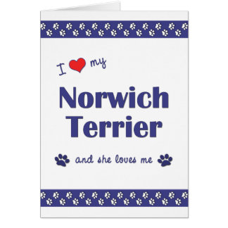 I Love My Norwich Terrier (Female Dog) Note Card